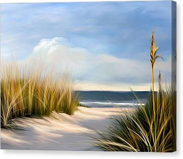 Seaside Path Canvas Print by Anthony Fishburne