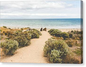 Cost Line Canvas Print - Seaside by Pavel Rybalkin
