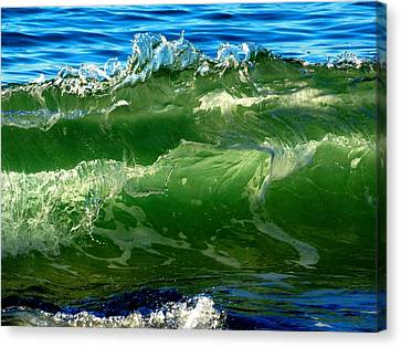 Blending Canvas Print - Seaside Symphony by Dianne Cowen