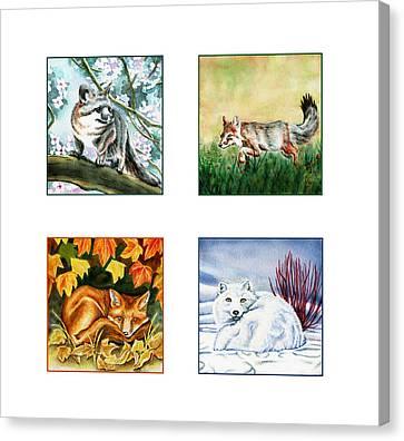 Seasons Of Fox Canvas Print by Antony Galbraith
