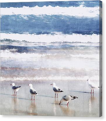 Seaspray Canvas Print by Holly Kempe