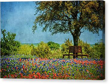 Canvas Print featuring the photograph Seating For Two by Ken Smith