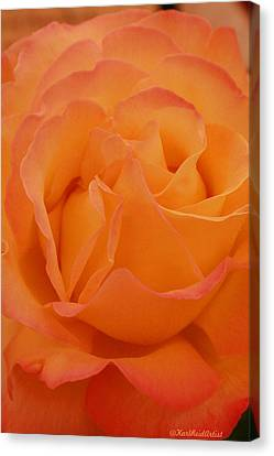 Seattle Rose Canvas Print by Karl Reid
