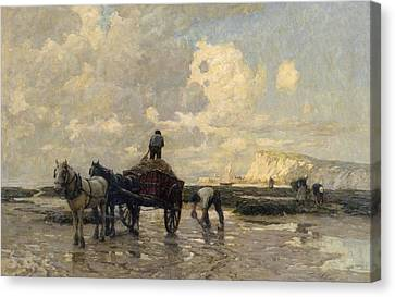 Bay Horse Canvas Print - Seaweed Gatherers by Terrick Williams