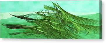 Seaweed Moves Canvas Print