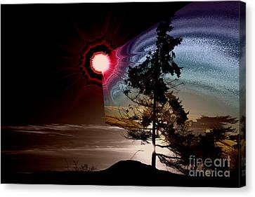 Sechelt Tree Stardust Canvas Print by Elaine Hunter