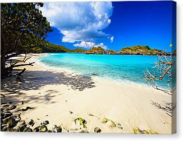 Secluded  Beach Canvas Print by George Oze