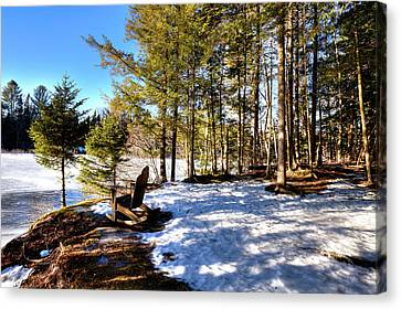 Secluded Moose River View Canvas Print by David Patterson
