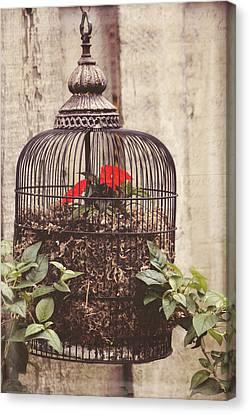 Secret Garden Art - You Have The Power Canvas Print by Jordan Blackstone