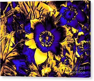 Secret Garden Canvas Print by Steve K