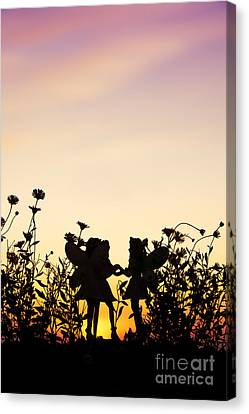 Flower Pink Fairy Child Canvas Print - Secret Sunrise by Tim Gainey