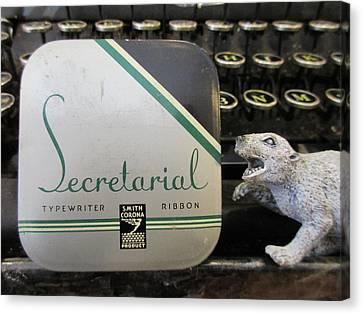 Secretarial Typewriter Ribbon And Weasel Canvas Print by David Lovins