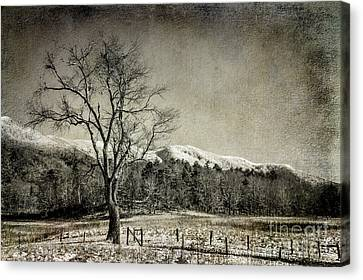 Fence Row Canvas Print - Secrets In The Valley by Michael Eingle