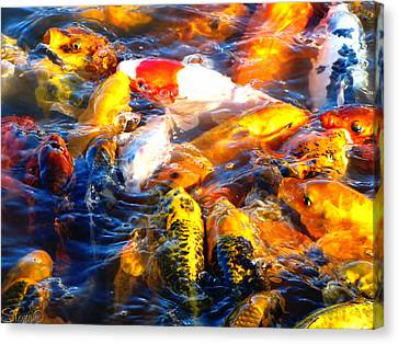 Secrets Of The Wild Koi 17 Canvas Print by September  Stone
