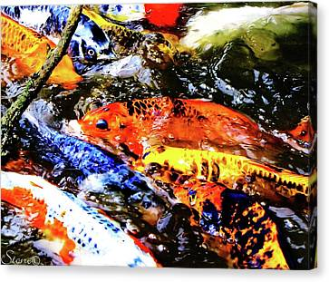 Secrets Of The Wild Koi 19 Canvas Print by September  Stone