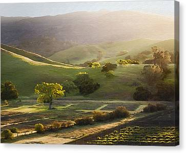 Sedgwick Sunrise Canvas Print