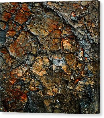 Sedimentary Abstract Canvas Print by Dave Martsolf