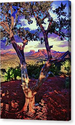 Sedona # 48 - Courthouse And Cathedral Rocks Canvas Print by Allen Beatty