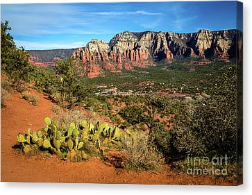 Sedona Morning Canvas Print by Jon Burch Photography