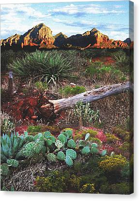 Sedona Mountain Sunrise Canvas Print