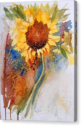 Seeds Of The Sun Canvas Print