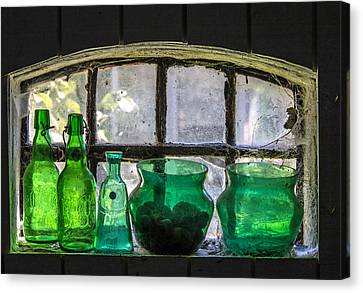 Canvas Print featuring the photograph Seeing Green by Odd Jeppesen