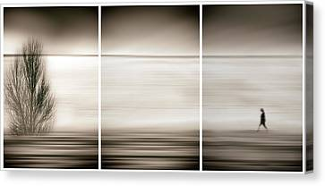 Seeking The Invisible Canvas Print by Paulo Abrantes