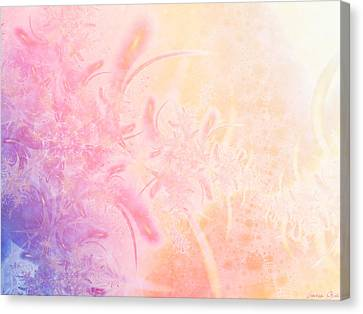 Seferino Canvas Print by Lauren Goia