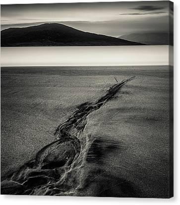 Seilebost Sand Tracks Canvas Print by Dave Bowman