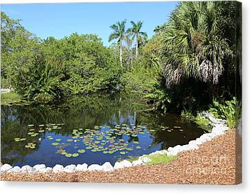 Selby Botanical Gardens Lily Pond Canvas Print