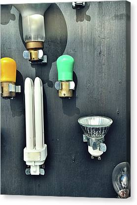 Selection Fo Light Bulbs Canvas Print by Tom Gowanlock