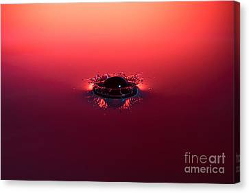 Semi Submerged Droplet Canvas Print