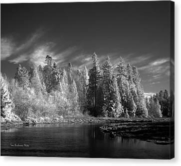 Semiahmoo River Canvas Print by Tom Buchanan