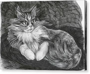 Semona Canvas Print by Anna  Duyunova