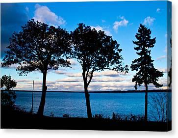 Seneca Lake Ny Canvas Print by Tom Molczynski