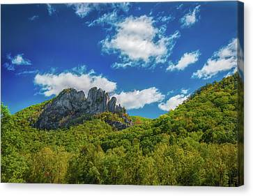 Canvas Print featuring the photograph Seneca Rocks by Guy Whiteley