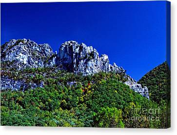 Seneca Rocks National Recreational Area Canvas Print