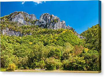 Seneca Rocks Canvas Print by Steve Harrington