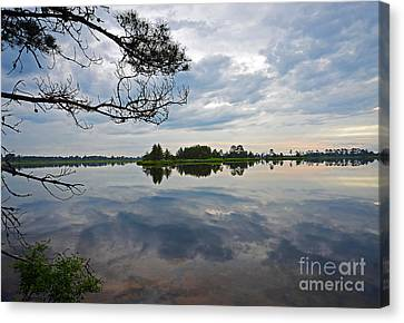 Canvas Print featuring the photograph Seney National Wildlife Refuge by Rodney Campbell