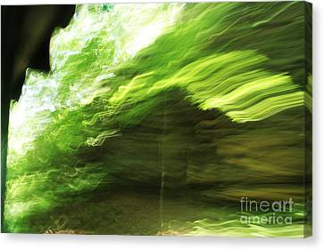 Sensations Canvas Print by Jamie Lynn