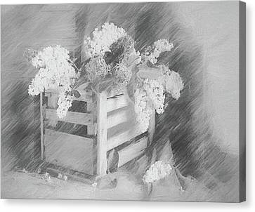 Sent To You With Love Black And White Canvas Print by Georgiana Romanovna