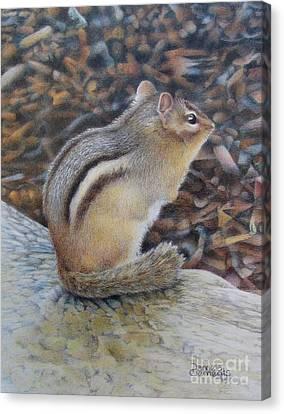 Sentinel Canvas Print by Pamela Clements
