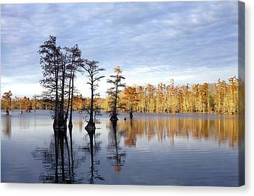 Sentinels Of The Lake Canvas Print
