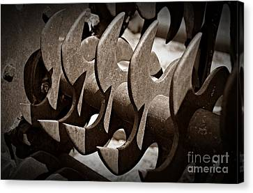 Canvas Print - Sepia Blades by Chalet Roome-Rigdon