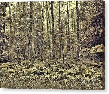 Sepia Landscape Canvas Print by Jeff Breiman