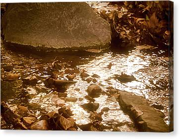 Sepia Sunlight Canvas Print by Michael Putnam