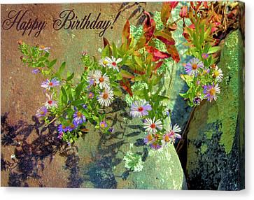 September Birthday Aster Canvas Print by Kristin Elmquist
