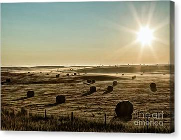 Canvas Print featuring the photograph September Hay by Brad Allen Fine Art