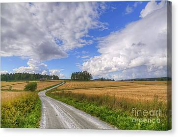 September In The Countryside Canvas Print by Veikko Suikkanen