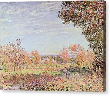 September Morning Canvas Print by Alfred Sisley